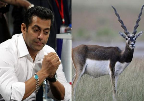 Salman Khan acquitted in chinkara, blackbuck poaching case
