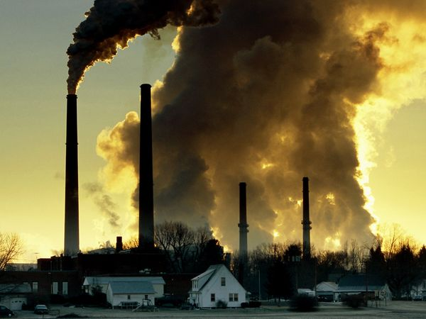 Air pollution damages arteries of even healthy young adults, new study shows