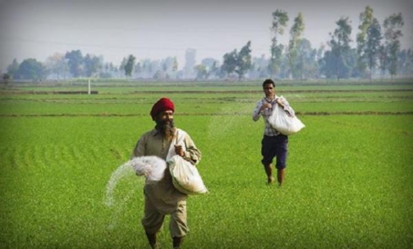 Doubling farm income in five years just a statement – no roadmap: B S Mann