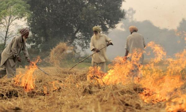 Amarinder again writes to PM for stubble burning compensation to check pollution